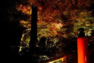181119kitano(10).jpg