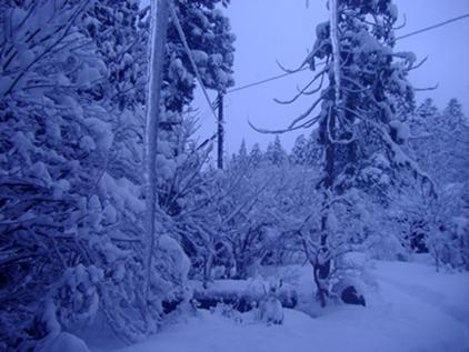 冬2019-1