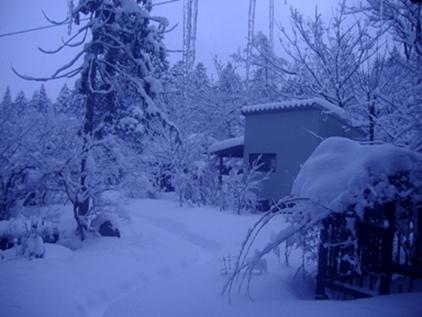 冬2019