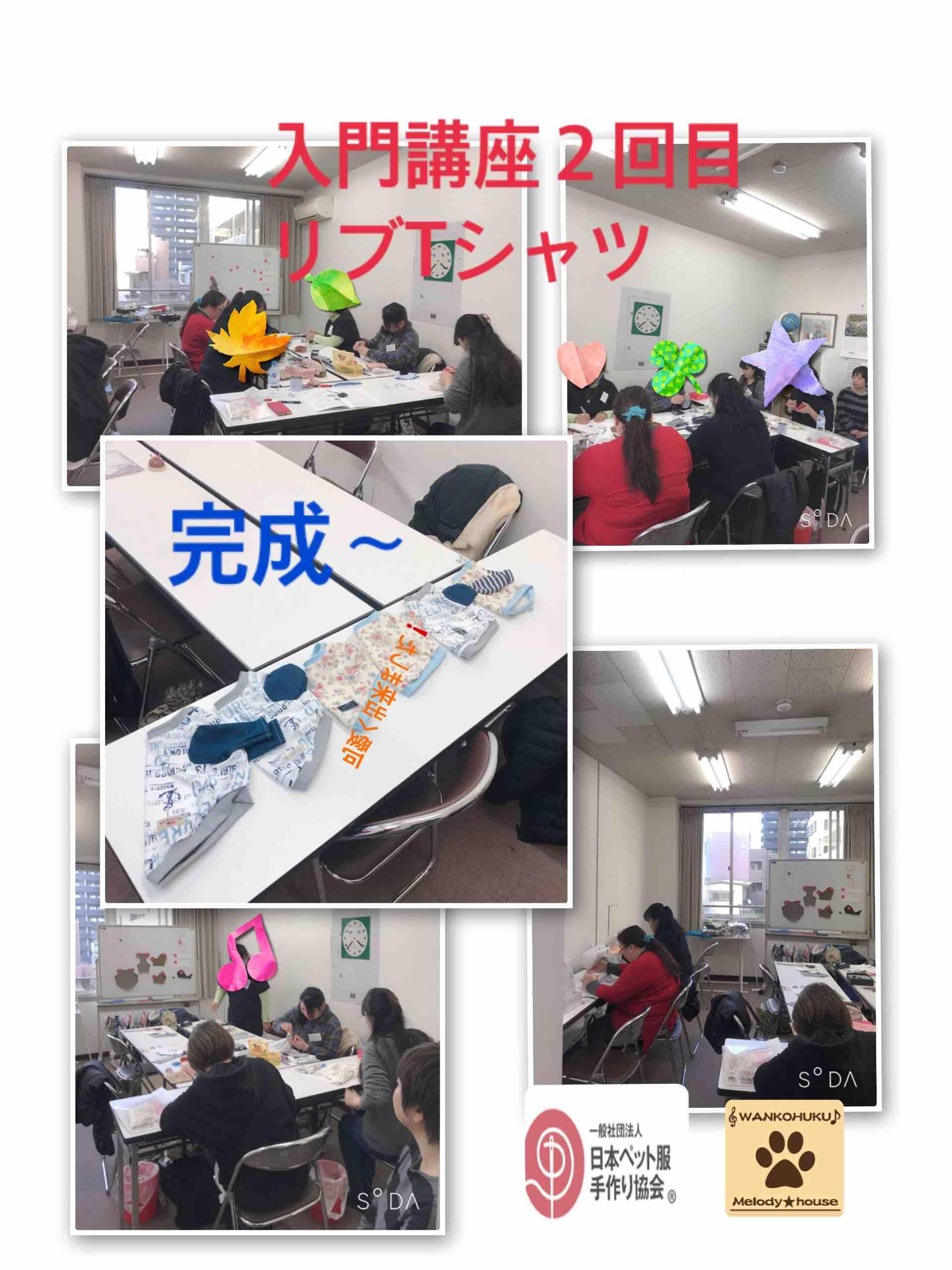 fc2blog_201901232040394da.jpg