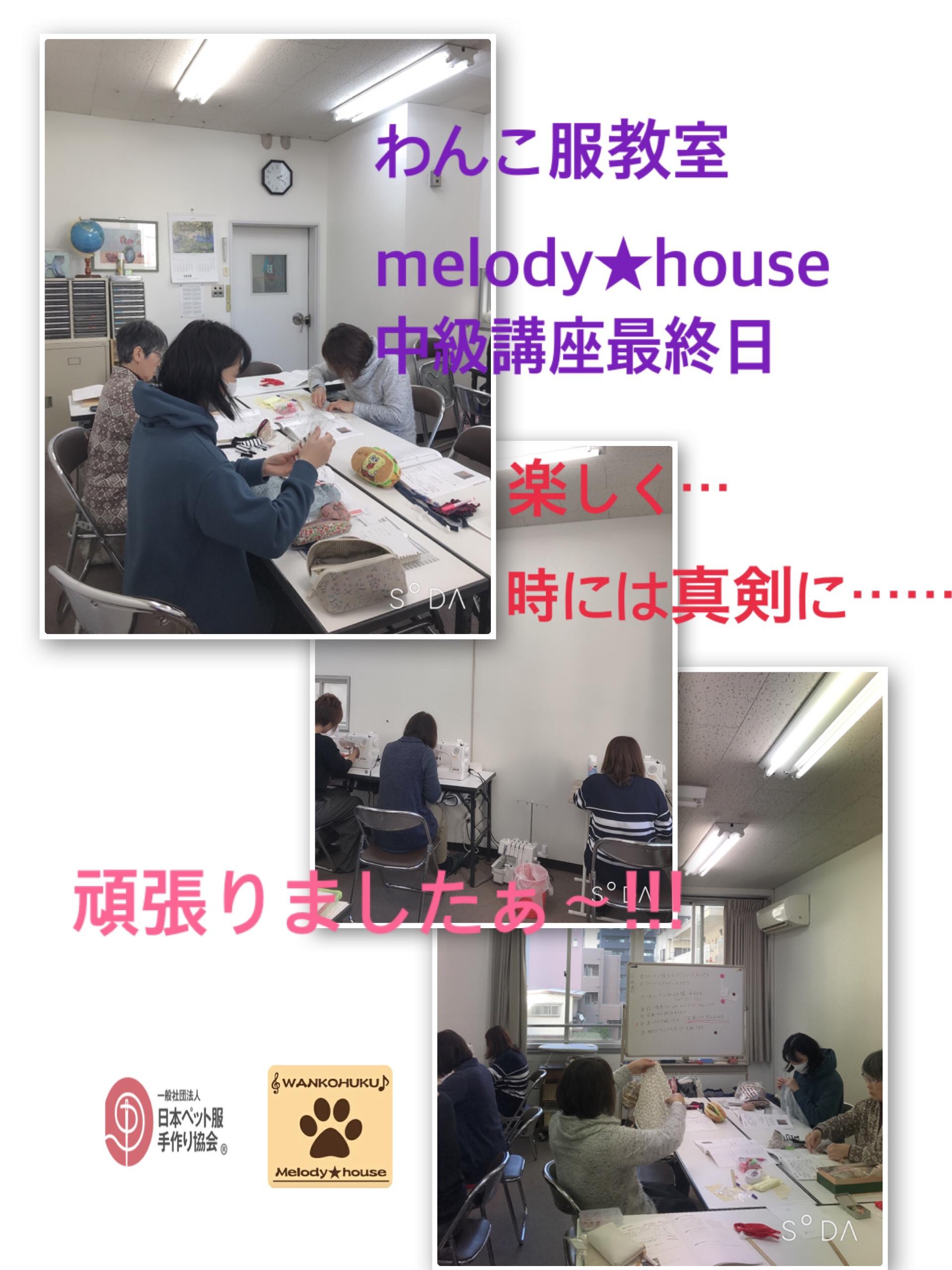fc2blog_20190123204106ef6.jpg