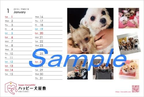 mini201802_F(2019-01)_omote-02.jpg