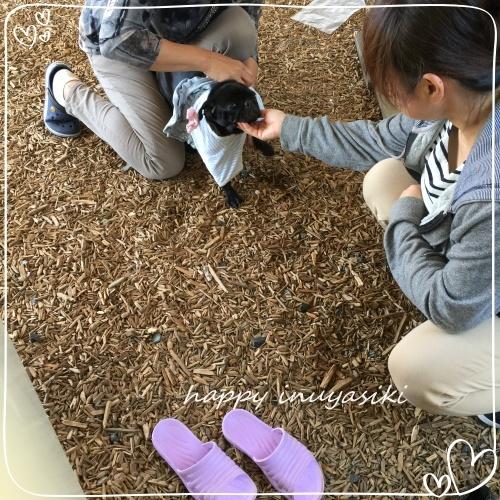 mini2018IMG_7340(2).jpg