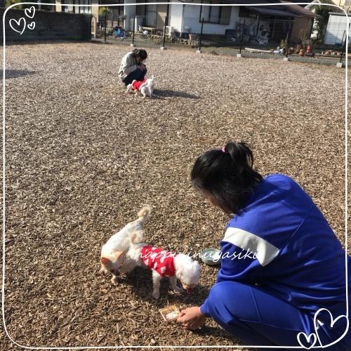 mini2018S__10108934.jpg