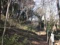 安行領家 400 興禅院境内 木立景 27