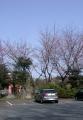 安行 1244-8 矢倉稲荷(吉場安行東京線沿い東側) B