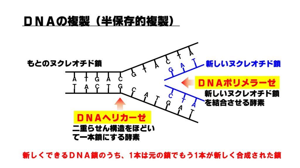 hanhozon-1024x576.jpg