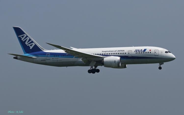 D-727.jpg