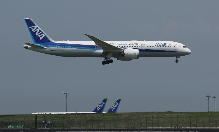 D-739.jpg