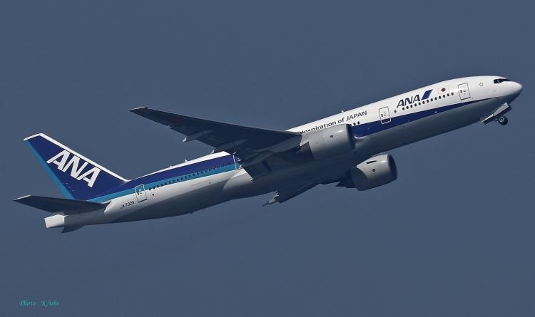D-914.jpg