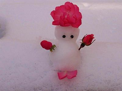 薔薇雪だるま4