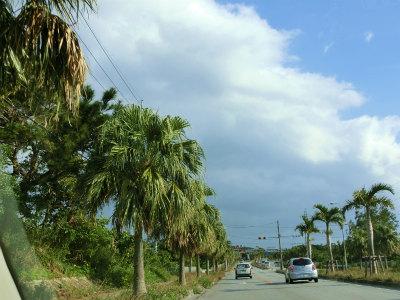 2019年1月沖縄2日目3
