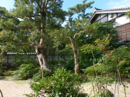 松江 武家屋敷 3
