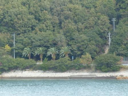 フェリー船上からの風景 11