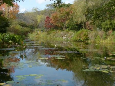 モネの庭 水の庭 6
