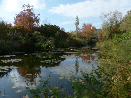 モネの庭 水の庭 2