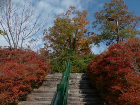 モネの庭 紅葉・黄葉 1