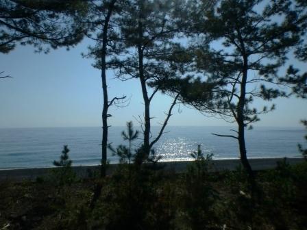 バス車窓風景 4 太平洋