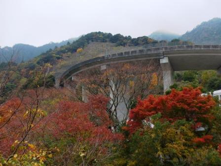 道の駅・霧の森 紅葉・黄葉 11
