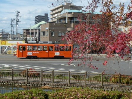 市内電車 & 紅葉