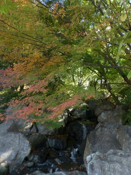 二之丸史跡庭園 紅葉 9
