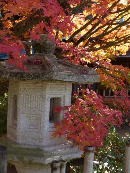 二之丸史跡庭園 紅葉 12