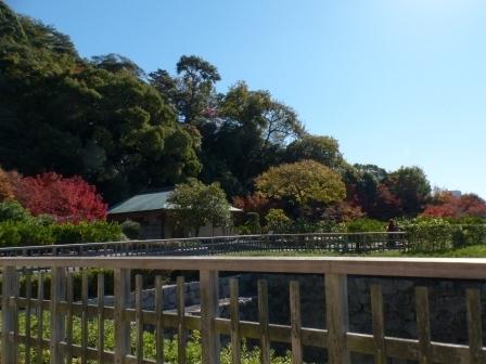 二之丸史跡庭園 5