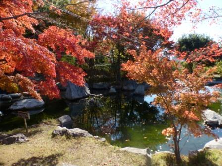 二之丸史跡庭園 紅葉 8