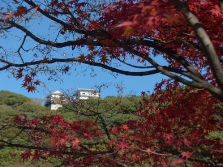 二之丸史跡庭園 紅葉 2