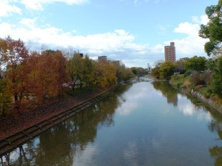石手川・湯渡橋からの眺め 1