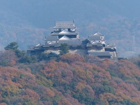 松山総合公園からの眺め 5