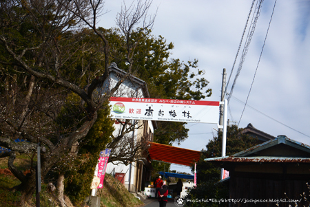 190214_minabe.jpg