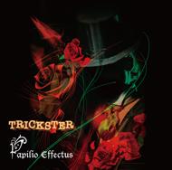 papilio_effectus-trickster.jpg