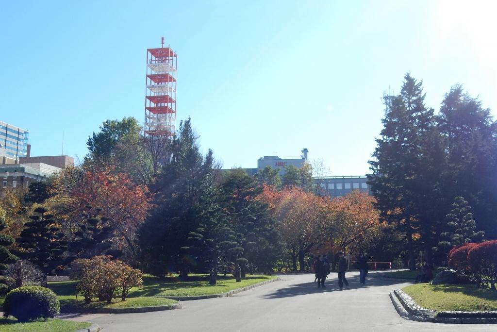 札幌小樽 051