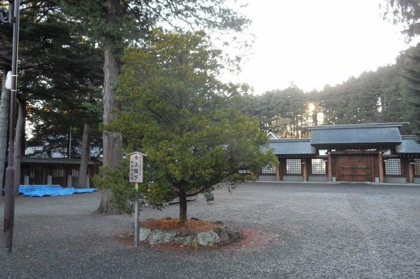 札幌小樽 247