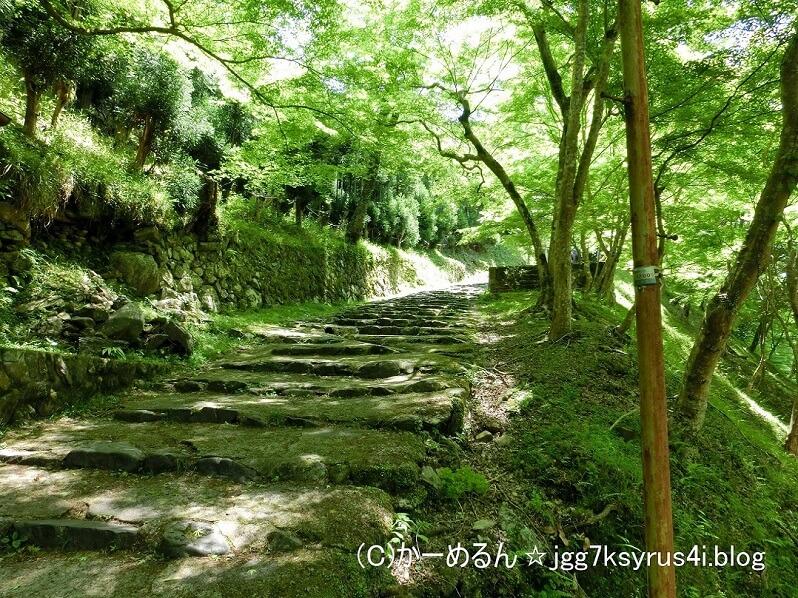 神護寺 途中の山道