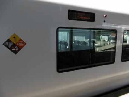 P1000960 (800x600)