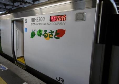 P1000965 (800x565)