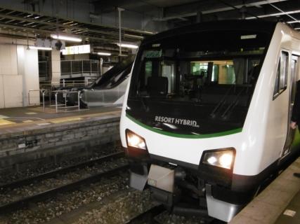 P1000966 (800x600)