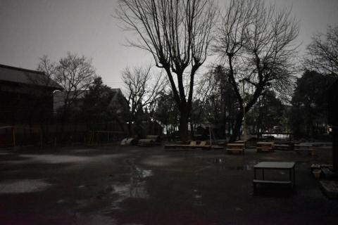 DSC_0008 (800x533)