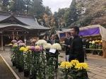 菊花展審査会