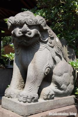 鷺宮八幡神社(中野区白鷺)11