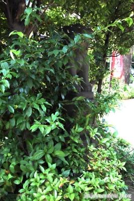 鷺宮八幡神社(中野区白鷺)13