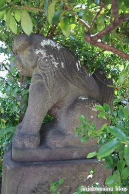 鷺宮八幡神社(中野区白鷺)15