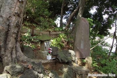 多摩川浅間神社(大田区田園調布)10