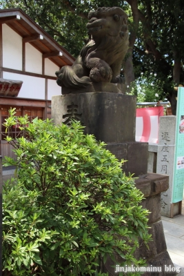 多摩川浅間神社(大田区田園調布)21
