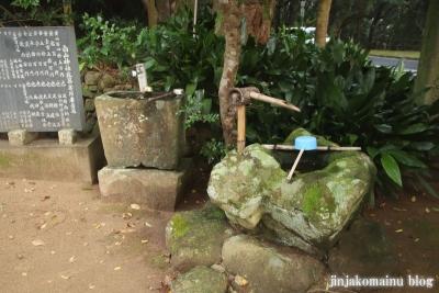 白山神社(土佐清水市足摺岬)5