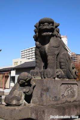 小松川神社(江戸川区小松川)16