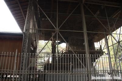 舎人氷川神社(足立区舎人)13