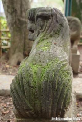 舎人氷川神社(足立区舎人)24